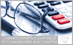 CCN 787 Cabinets d'experts-comptables et commissaires aux comptes - My Convention Collective CFTC-CSFV